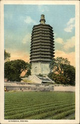 A Pagoda and Grounds Postcard