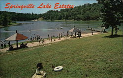 Springville Lake Estates