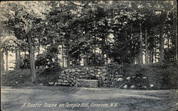 A Rustic Scene on Temple Hill