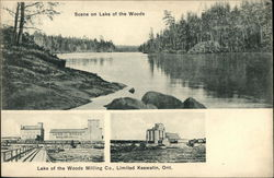 Scene on Lake of the Woods