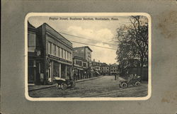 Poplar Street, Business Section