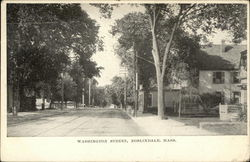 Tree Lined View of Washington Street