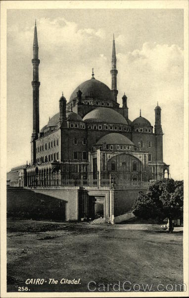 Cairo - The Citadel/Mohamed Ali Mosque Egypt Africa
