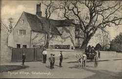 Thorpe Village, Peterborough