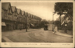 The Uplands, Swansea