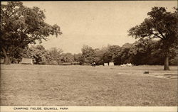 Camping Fields, Gilwell Park Postcard
