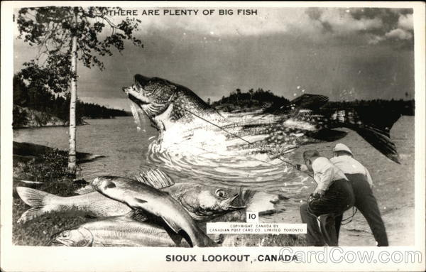 There are Plenty of Big Fish Sioux Lookout Canada Ontario