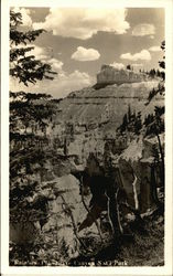 Rainbow Point at Bryce Canyon National Park Postcard