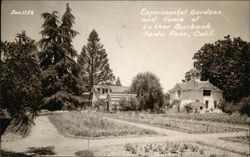 Experimental Gardens and Home of Luther Burbank
