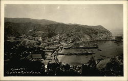 View of Avalon Bay on Santa Catalina Island