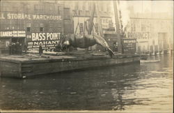 Warehouse and Wharf - Whale being Unloaded, Bass Point