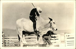 Cowboy anf Rodeo Bull - SIlver Dollar