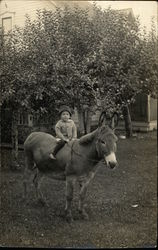 Young Child on a Donkey