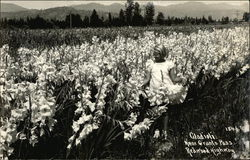 Girl in Field of Gladioli