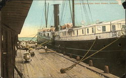 Loading Cotton Upon Ocean Steamer