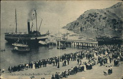 Steamer at Avalon
