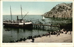 Boat Landing at Avalon