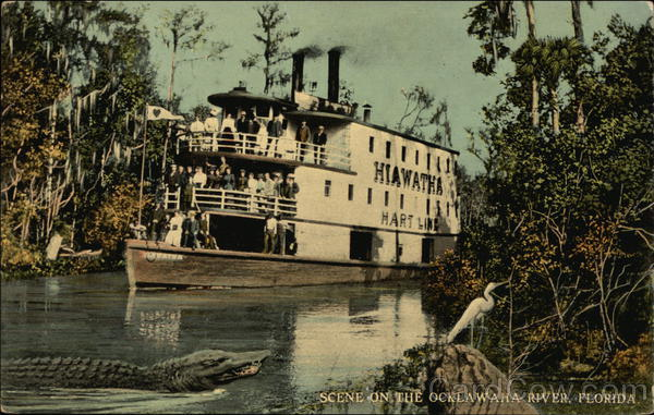 Scene on the Ocklawaha River, Hiawatha of the Hart Line Florida