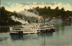 Scene on Monongahela River - Packet LC Woodward Postcard