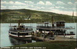 Steamers at lake Station