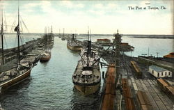 The Port at Tampa