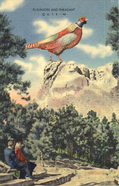 Rushmore And Pheasant Exaggeration