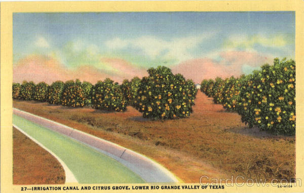 Irrigation Canal And Citrus Grove Rio Grande Valley Texas