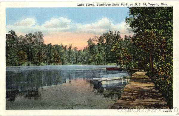 Lake Scene, Tombigee State Park Tupelo Mississippi