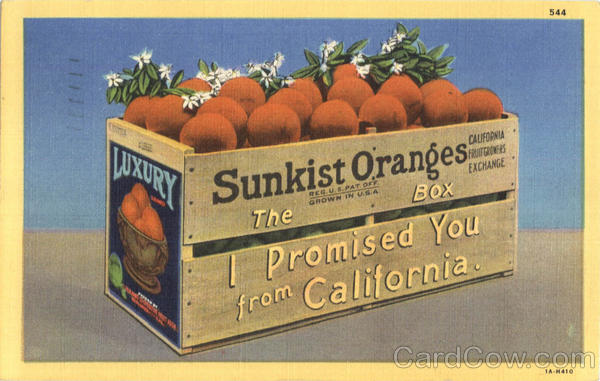 Sunkist California Oranges Scenic Fruit