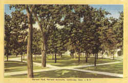 Harvard Yard, Harvard University Postcard