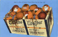 Here Is A Box Of Famous Texas Citrus Fruit For You Postcard