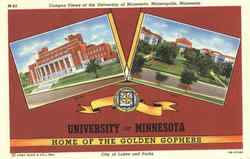 University Of Minnesota Postcard