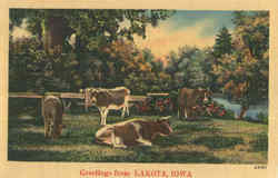 Greetings From Lakota Postcard