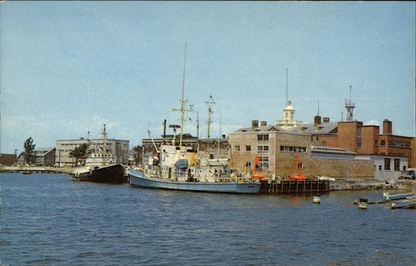 Harbor at Woods Hole Cape Cod Massachusetts