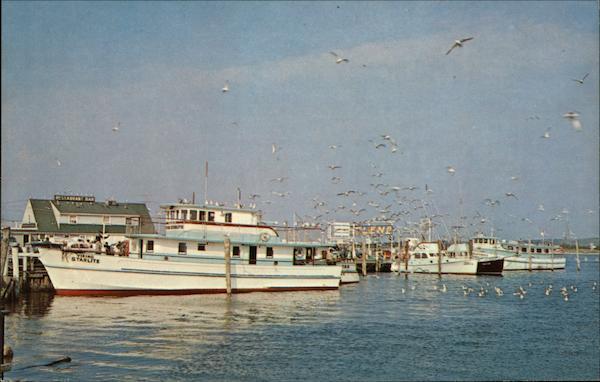 Fishing and party boats montauk ny postcard for Montauk fishing party boats