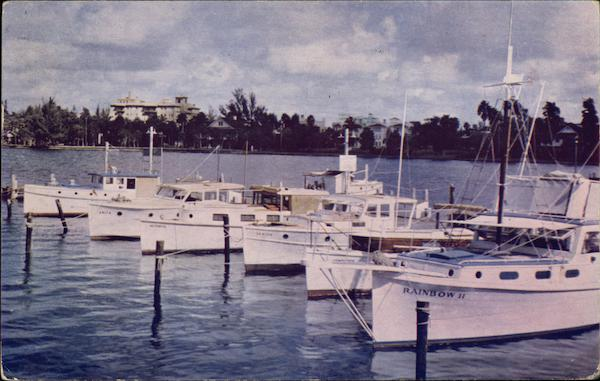 Boats at Municipal Dock Sarasota Florida