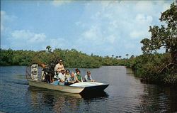 Everglade Airboat Tours Postcard