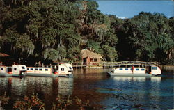 Rainbow Springs - Submarine Boat Trips Postcard