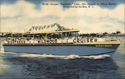 Sightseer Wildwood Cruiser