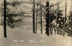 "Snow View of ""The Ark"""