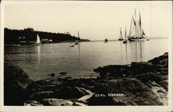 Boats in Seal Harbor