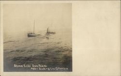 Steamer San Pedro After Sinking in the Columbia