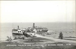 "Steamers ""Salacia and Catherine"""