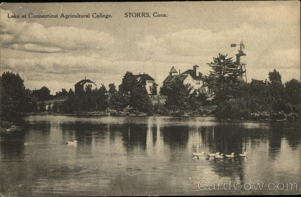 Lake at the Connecticut Agricultural College Storrs
