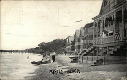 Houses and Beach-goers Along the Shore