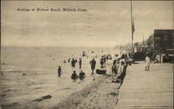 Bathing at Walnut Beach