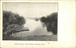 """Little Pond,"" Lake Bashan"