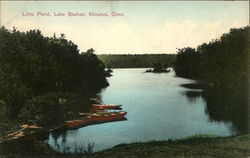 Little Pond, Lake Bashan