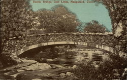Rustic Bridge, Golf Links