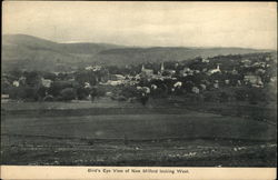 Bird's Eye View of Town, Looking West